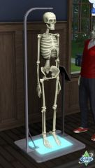 Sims 3 University Competence Science squelette anatomie
