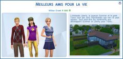 Les Sims 4 Willow Creek amis