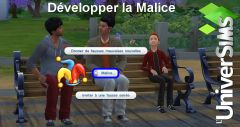 competence enfant N10 malice interaction4