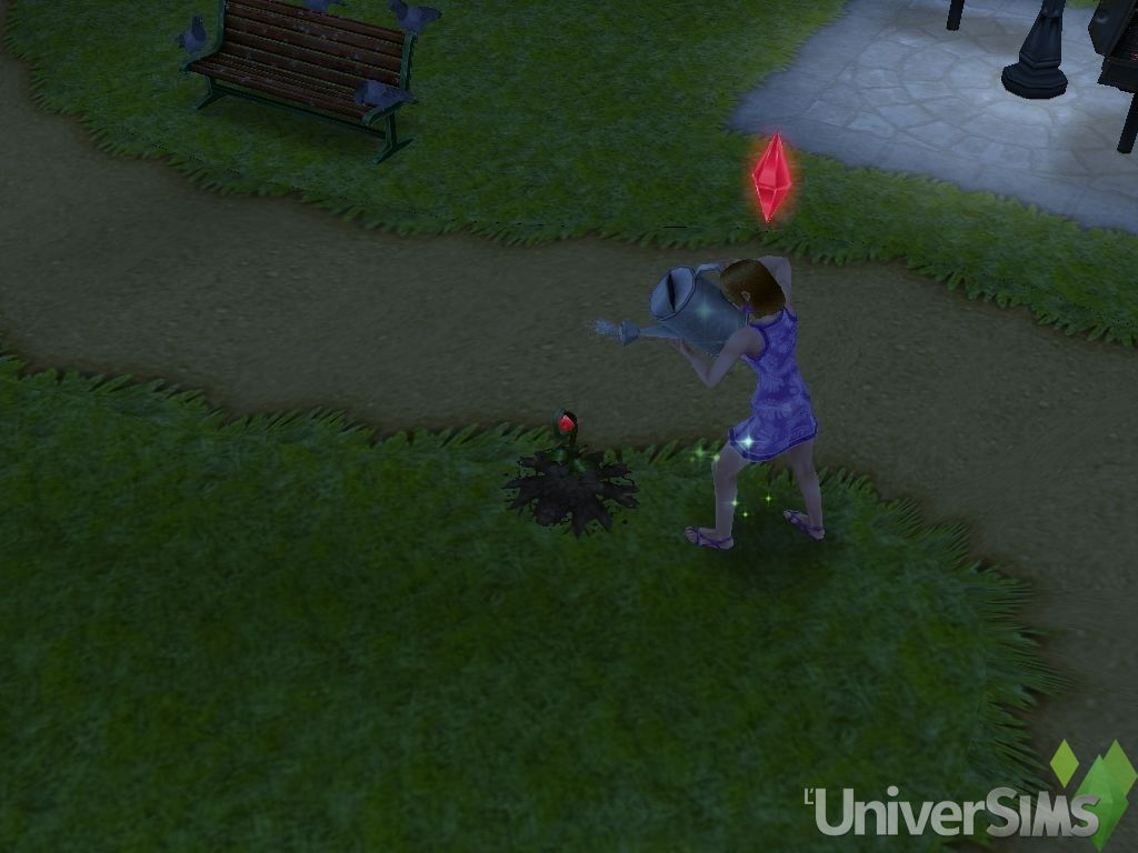 les-sims-gratuit-freeplay-quete-RED