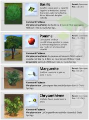 Sims 4 Collections jardinage 7