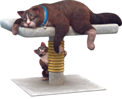Sims-4-chats-chiens-cats-dogs-addon-pack-extansion-render-png-transparent-05.png