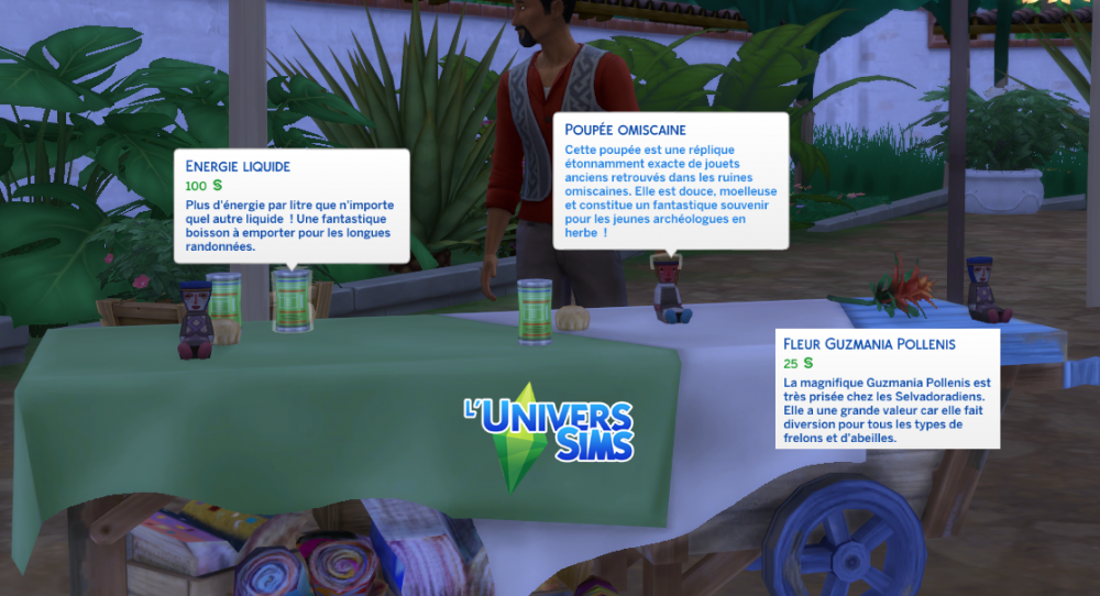 sims4-gamepack-jungle-selvadorada-market.png