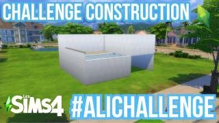 Sims4 Challenge construction