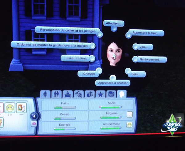 Interactions sims chiens 01