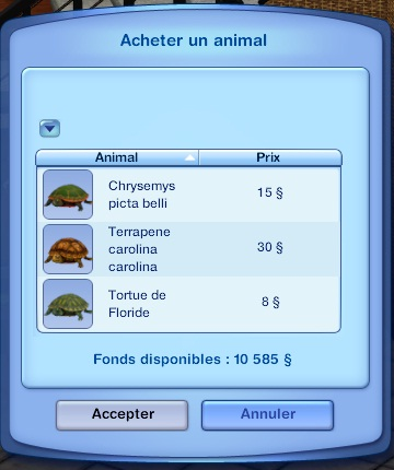 menu tortues